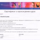 Сертификат Введение в кибербезопасность
